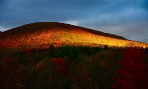 Mountain-Treasure-Windham