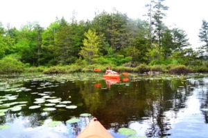 Kayaking at North-South Lake